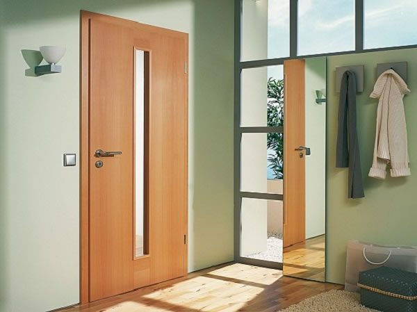 Flush door with glass insert